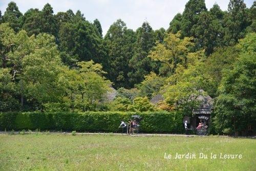 京都に2度・・・。_f0329586_17500612.jpg