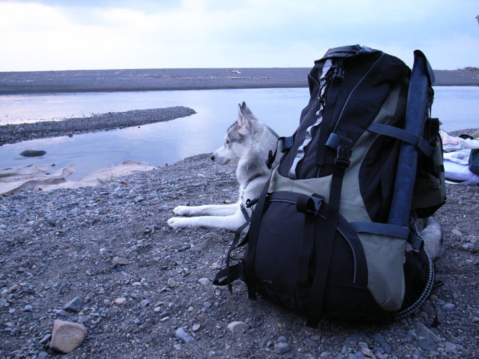 First Pilgrimage for Siberian Husky Hana II, May 4th 2006 (1)_c0049299_21301184.jpg