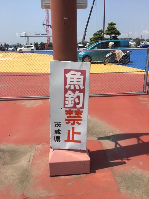 f0144003_12371518.jpg