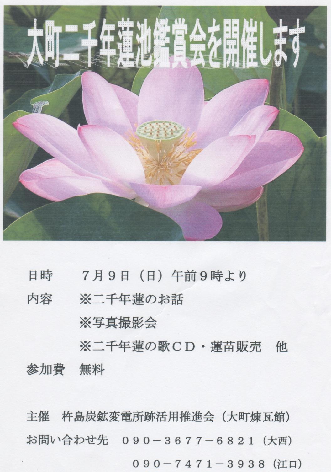f0353242_17443298.jpg