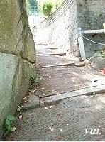 f0310446_16082269.jpg
