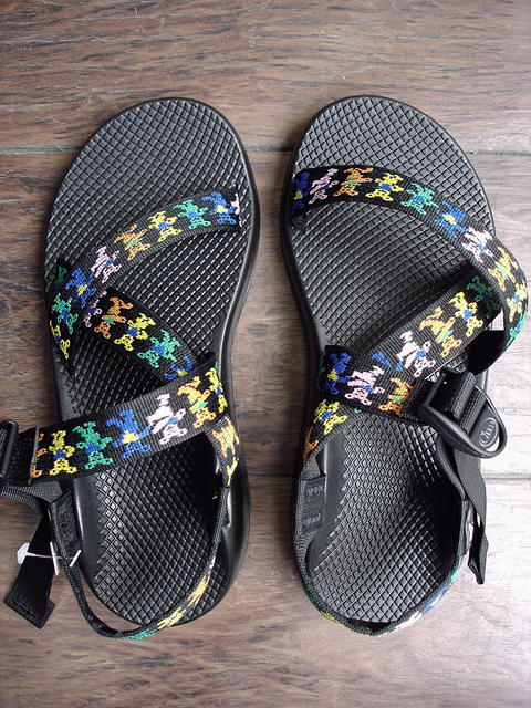 "NEW : Chaco Z1 [Grateful Dead Edition] Made in USA ""Limited"" 2017 SUMMER !!_a0132147_21164419.jpg"