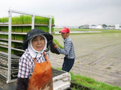 七城米 長尾農園 平成29年度の田植えを現地取材_a0254656_18565851.jpg