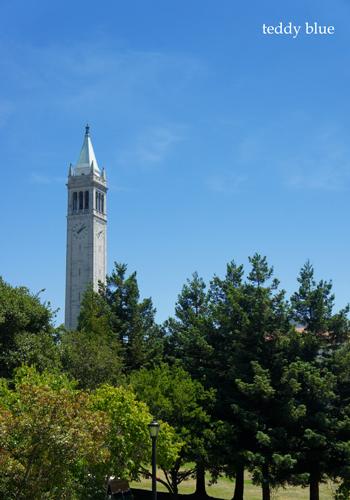 Berkeley, San Francisco East Bay Area  バークレーにて_e0253364_16043763.jpg
