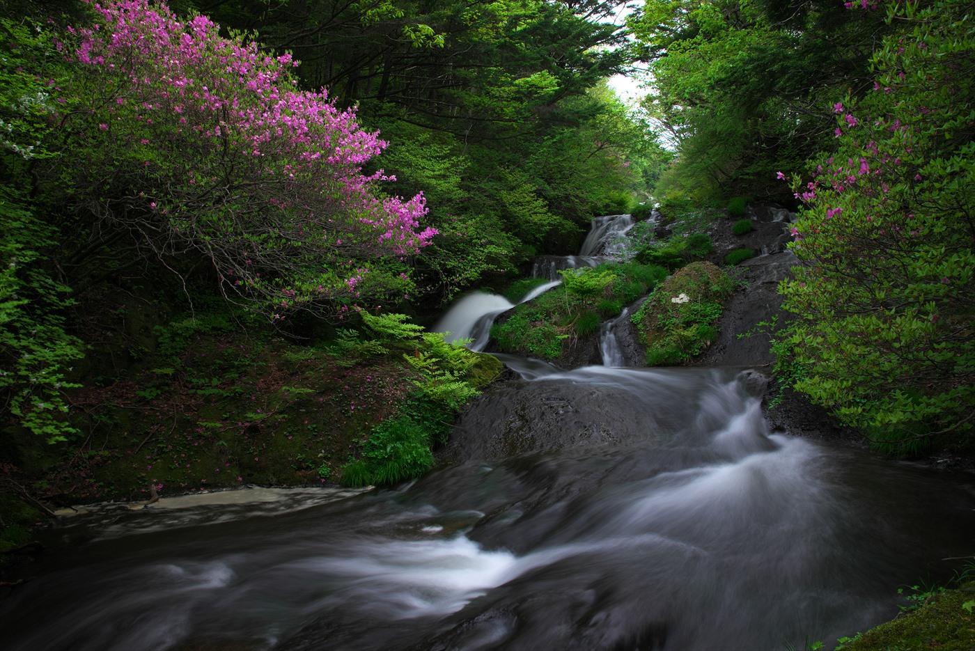 竜頭の滝 2_f0018464_7344186.jpg
