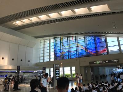 (先発便)那覇空港に到着しました 海藻日記6 - 平洲中NOW29