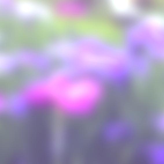 a0329820_14564871.jpg