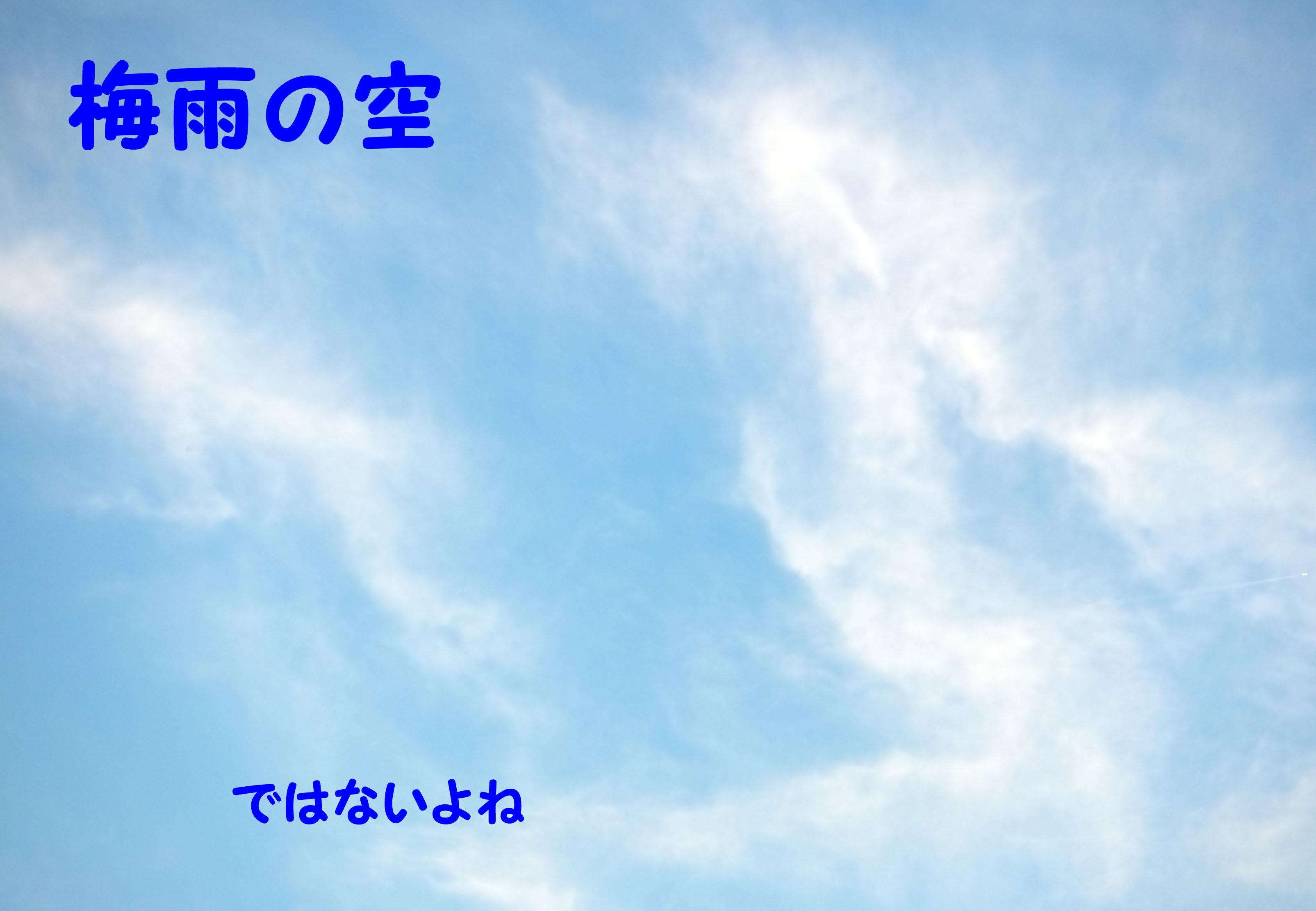c0338721_12464031.jpg