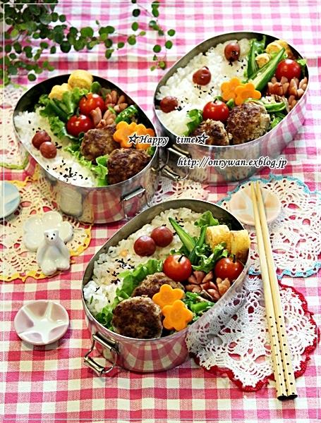 ハンバーグ弁当と鮎飯♪_f0348032_17522567.jpg