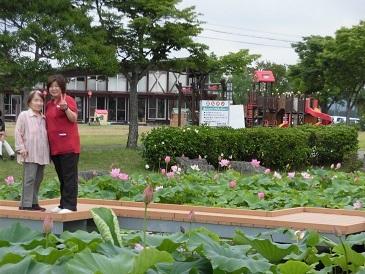 蓮の花 平池公園_e0163042_17210766.jpg