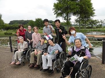 蓮の花 平池公園_e0163042_17211811.jpg