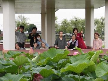 蓮の花 平池公園_e0163042_17215196.jpg