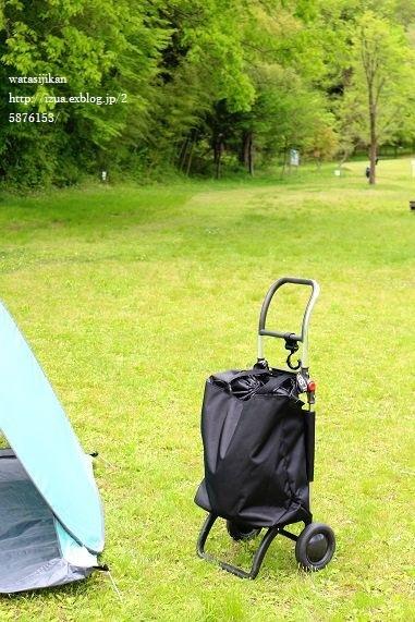 DEAN&DELUCAの保冷バッグと必需品_e0214646_22495928.jpg