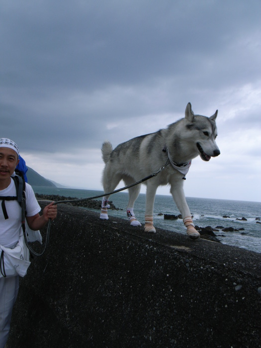 First Pilgrimage for Siberian Husky Hana II, May 4th 2006 (3)_c0049299_21230979.jpg