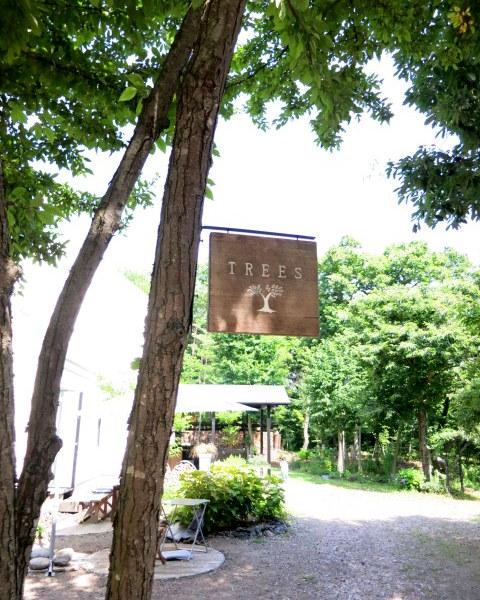 御代田町のカフェ TREES_d0035921_11541781.jpg