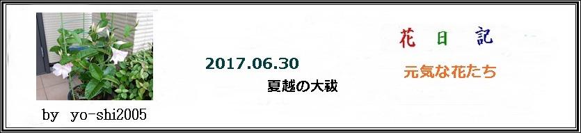 e0033229_19242567.jpg