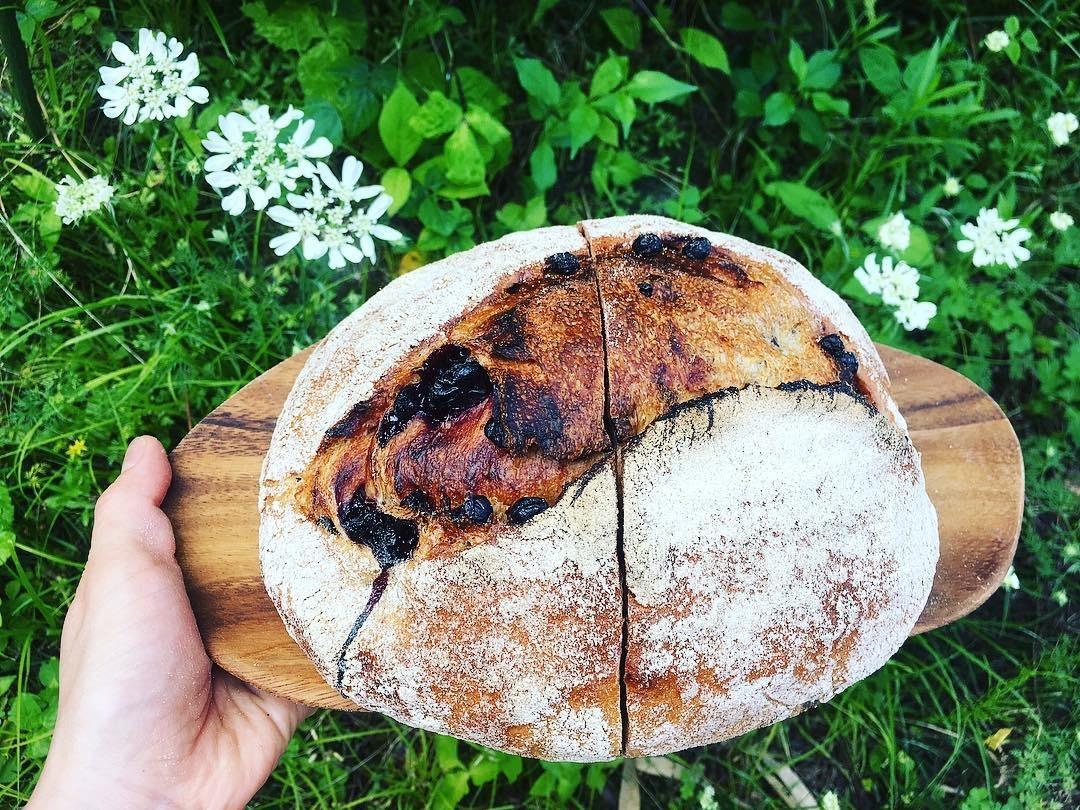 ちだパンさんのご紹介。_e0060555_17535418.jpg