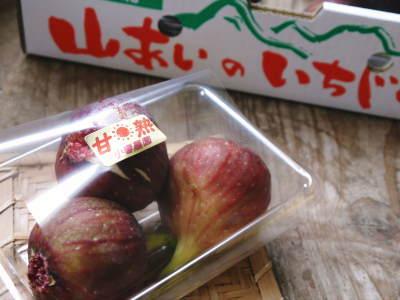 甘熟イチジク 今年も8月中旬からの出荷に向け、順調にそして元気に成長中!_a0254656_18164878.jpg