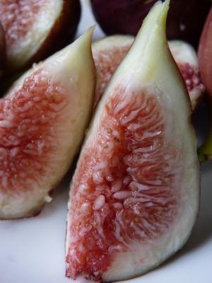 甘熟イチジク 今年も8月中旬からの出荷に向け、順調にそして元気に成長中!_a0254656_18180412.jpg