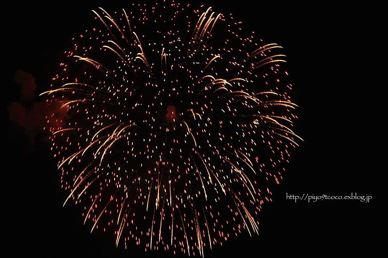 はじめての  fireworks ♪_d0367763_20072801.jpg