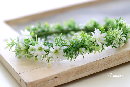 大人可愛い花冠♪_d0167088_5173449.jpg