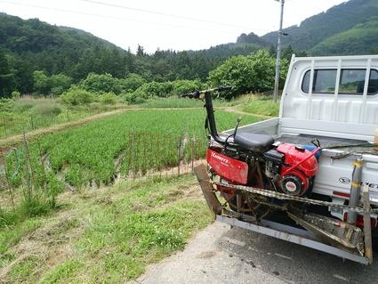 農作業_e0161791_12563849.jpg