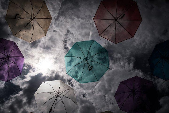 もう梅雨が明けたのかと早とちりして焦りまくる雨傘_d0353489_2212313.jpg