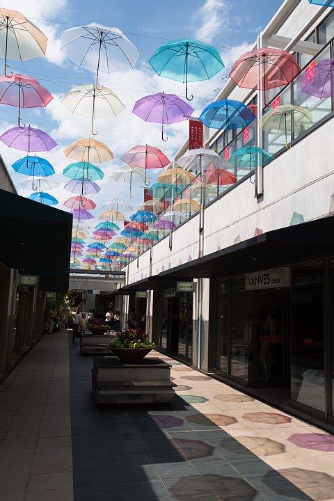 もう梅雨が明けたのかと早とちりして焦りまくる雨傘_d0353489_22225871.jpg