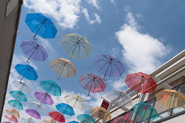 もう梅雨が明けたのかと早とちりして焦りまくる雨傘_d0353489_22355439.jpg