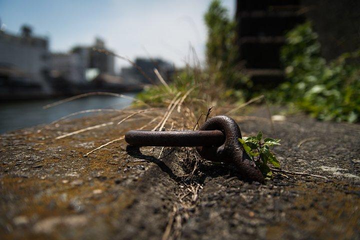 まったりと錆び逝く運河_d0353489_2356162.jpg