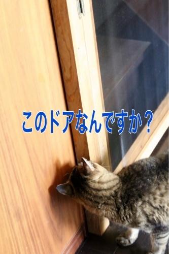 c0366722_18341886.jpg