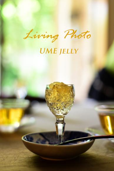 Food Photo :Living Photo_b0197225_17020694.jpg