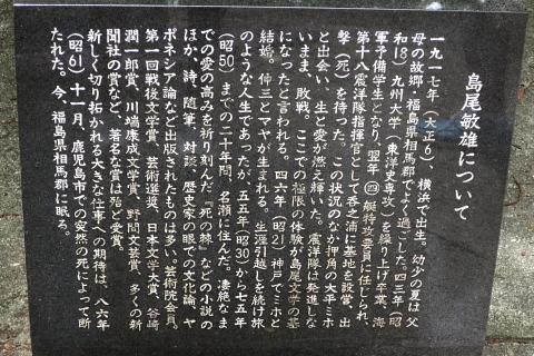 創る旅――奄美大島・加計呂麻島_d0046025_01064303.jpg