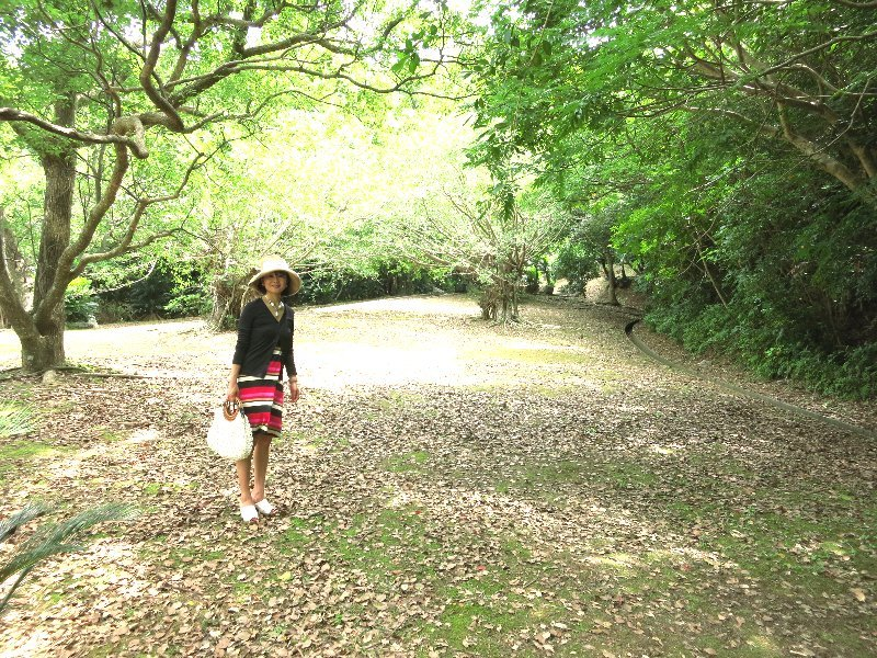 創る旅――奄美大島・加計呂麻島_d0046025_01102332.jpg