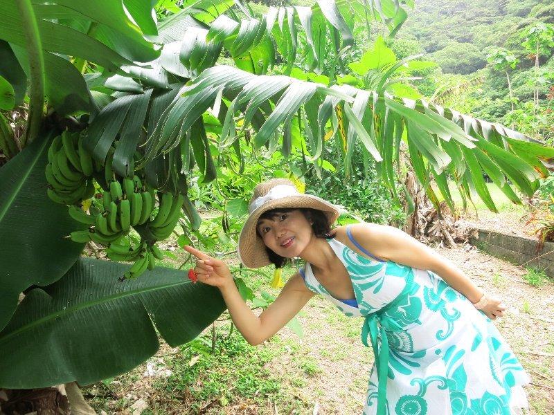 創る旅――奄美大島・加計呂麻島_d0046025_07442597.jpg