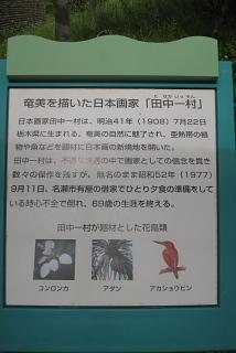 創る旅――奄美大島・加計呂麻島_d0046025_20201146.jpg