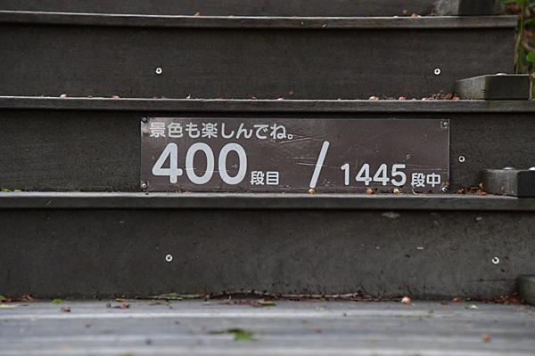 a0278809_11282543.jpg