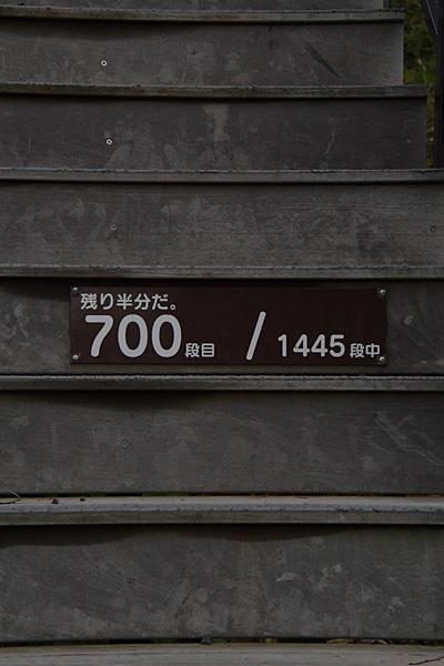 a0278809_11294944.jpg
