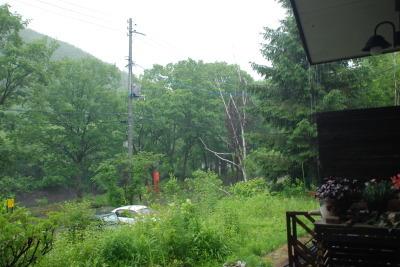 7月3日(月)  雨  18度_f0210811_07170957.jpg