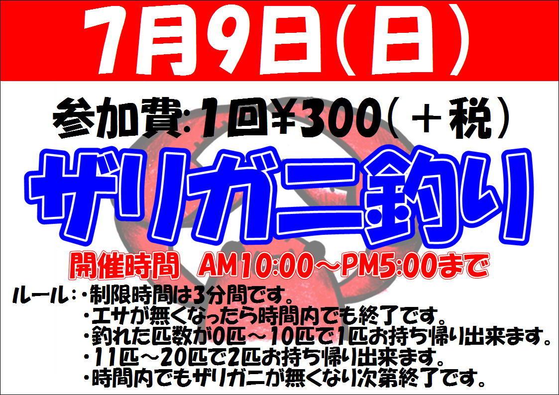 170705 水草・淡水魚_f0189122_10172068.jpg
