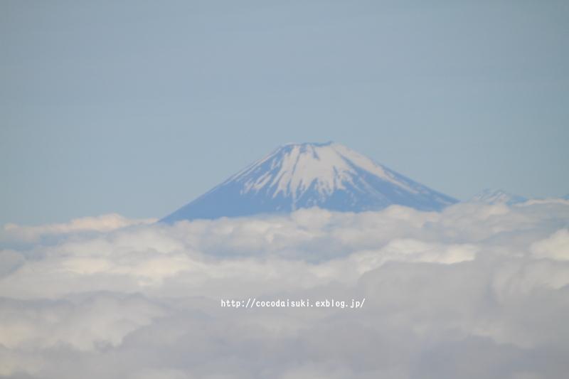 南の島ツアー2017 Part.2 *1日目 * 石垣島♪_d0367763_19134416.jpg