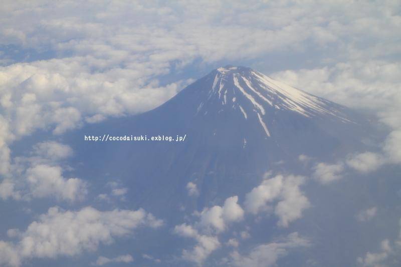 南の島ツアー2017 Part.2 *1日目 * 石垣島♪_d0367763_19254008.jpg
