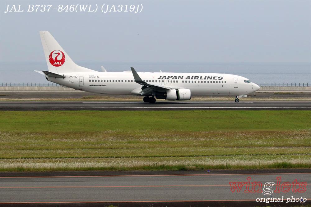 '17年 大分空港(RJFO)レポート ・・・ JAL/JA319J_f0352866_1214030.jpg