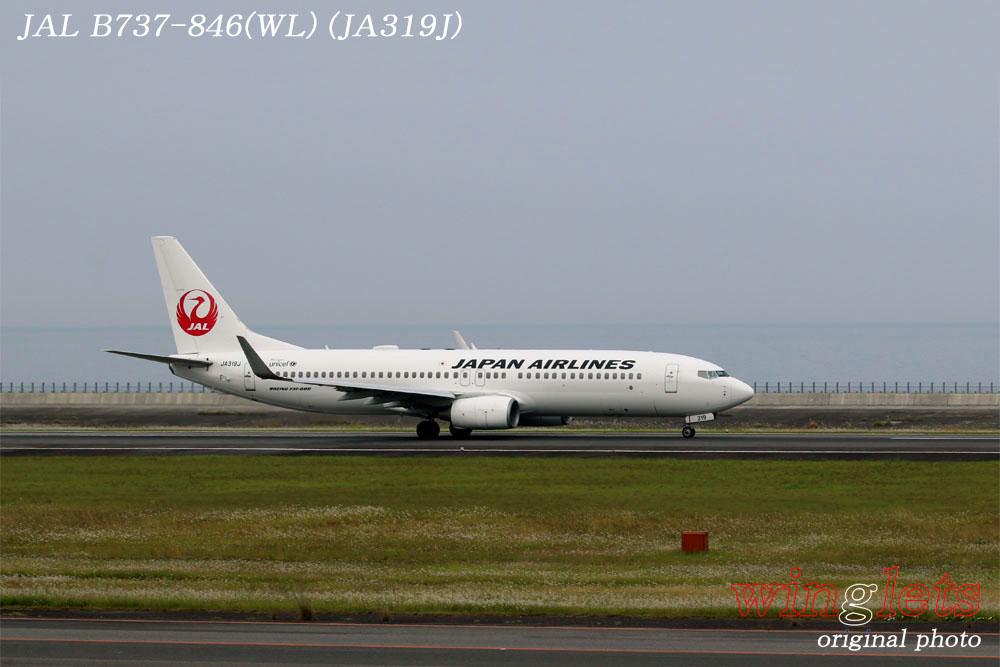 '17年 大分空港(RJFO)レポート ・・・ JAL/JA319J_f0352866_12143033.jpg