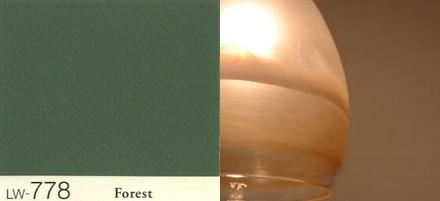 グリーン壁と照明器具_b0183404_10571964.jpg