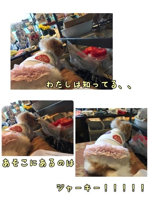 f0170910_01345415.jpg