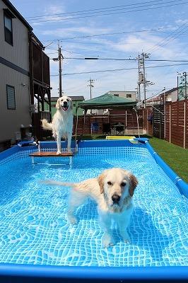 夏だプールだ!後編_e0293553_08022306.jpg