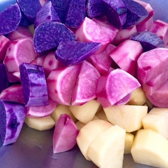彩り豊かな野菜がトトノエ畑で収穫できました。_a0325273_11202916.jpg