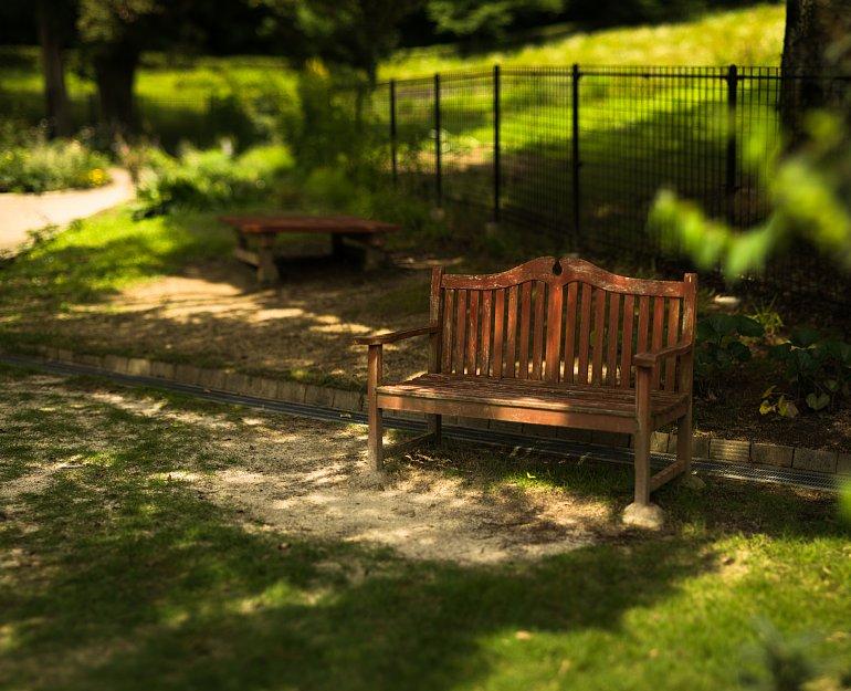 英国庭園で梅雨の晴れ間を慈しむ透明人間たち_d0353489_2211012.jpg
