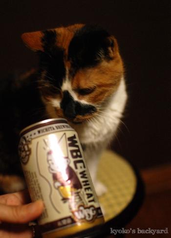 ビールと隊長(猫)_b0253205_04214373.jpg